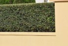 South Toowoomba Decorative fencing 30