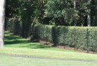 South Toowoomba Wire fencing 15
